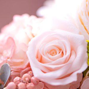flower420151_TP_V4